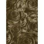 V-1 Chocolate Roses