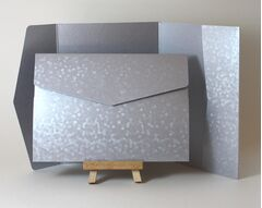 Comet and Precious Pearl Texture 178x128mm Pocketfolds