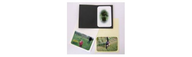 Irridescent Conqueror & Curious Photomount Cards